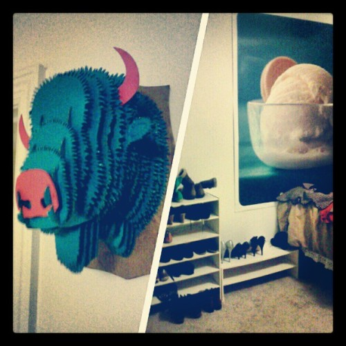 Finally have my giant ice cream poster and cardboard bison head up in my new place. It's starting to feel more like home now :)
