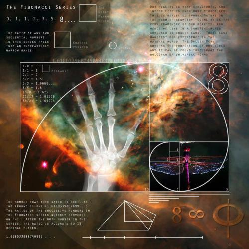 "awakeningourtruth:  The Mind Unleashed  The Fibonacci Sequence… Or Golden Ratio Φ / φ… The blueprint for reality… Fibonacci sequence of numbers… Each number is the sum of the previous two numbers… Starting with 0 and 1… This sequence begins… 0, 1, 1, 2, 3, 5, 8, 13, 21, 34, 55, 89, 144, 233, 377, 610, 987… This can go on… Well forever… ""All is number…"" ~Pythagoras~…  Math of God: Video: http://www.youtube.com/watch?v=nxDGbHG5abwAwakening Our Truth http://awakeningourtruth.tumblr.com"