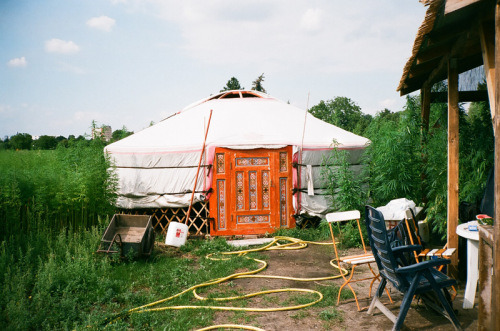 … Little House in Weed Field , Berlin by Maxime Ballesteros