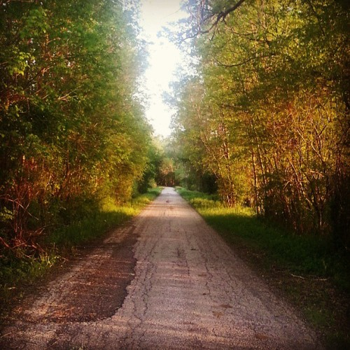 rollingdownthatlosthighway:  Come, follow me? #home #countryside #backroad #wisconsin