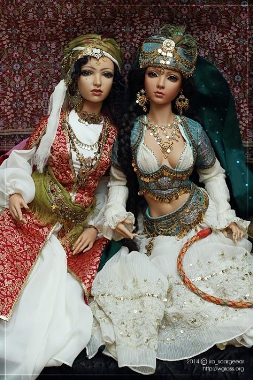 bjd limhwa half-elf elli arabian harem