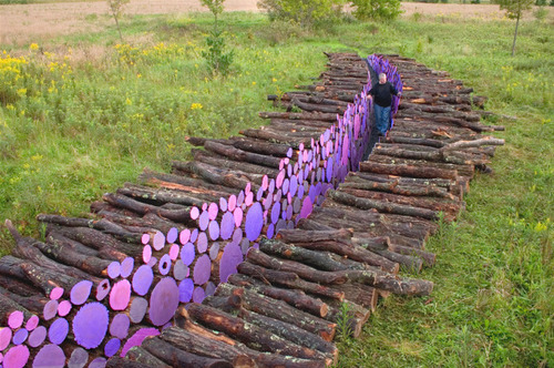 laughingsquid:  Wake, A Pathway of Brightly Painted Cut Logs by Michael McGillis