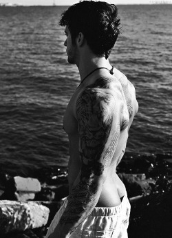 mysurrealgaylife:  Cracked and Tatted
