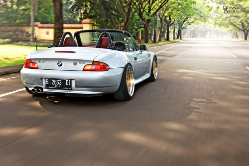 Nothing to worry about Starring: BMW Z3 (by dbaguz)