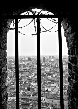 elinka:   Tower View  Another view from the Asinelli tower in Bologna, italy. By shootingthedog    Alex