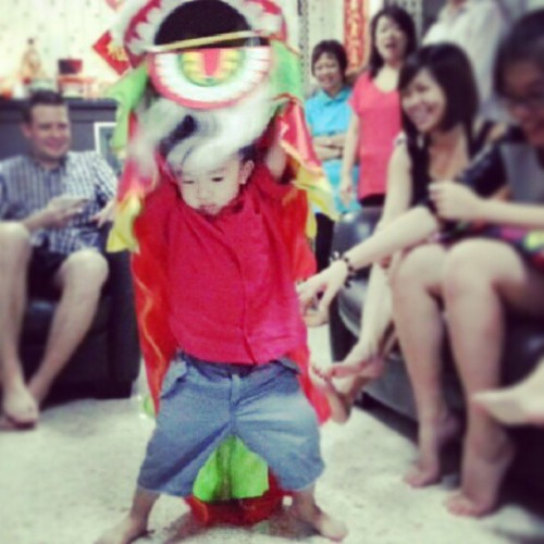 ajesome:  omg cute nephew lion dancing!   My very cute nephew doing the lion dance! He's very committed and good indeed! :) We are all watching in joy.