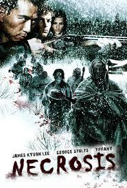 Necrosis (aka Blood Snow) [2009] Six friends head off to an isolated cabin on a mountain for the weekend, they make a quick stop at a bar before they head out. While there they get warned that the place they're going to is haunted and bad things happen up on the mountain. Once they get things settled for the weekend, they're warned about a blizzard that's approaching.  They find out about the Donner party, which involved someone who bought the cabin a long time ago that went mad and killed his family before taking his own life.  The plot had potential, and there were even a few twists. But they all went flat or didn't follow through all of the way, the acting wasn't extremely terrible,  The cabin was a nice setting, but the CGI snow that was used was done poorly. Not much blood, some graphic scenes, and some nudity.  The film doesn't make sense at some points, and seems to rush towards the end after a whole bunch of nothing happens. A real slow paced film with some scenes that tend to pick up. Sadly, the cameos in the film were probably the highlight.  4/10 rotting corpsesC Vengeance