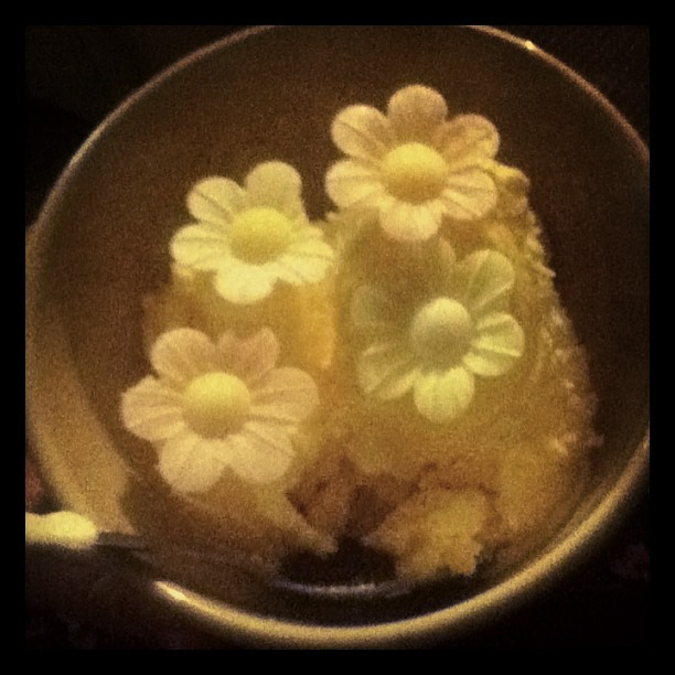 My nan is defo the cutest person on the world #flower #power #ice #cream