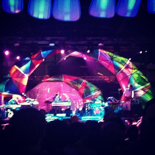 Animal Collective 🐛🐛🐛🐛🐛🐛