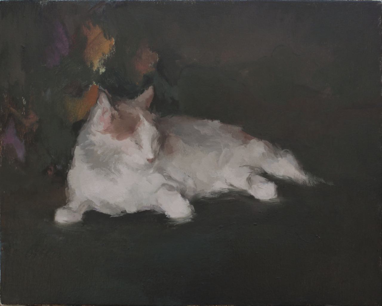hijaktaffairs:  michelle farro jack bird's cat, 2013 oil on canvas, 14 x 18""