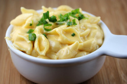 prettygirlfood:  Shells & Cheese Ingredients:8 ounces shells  medium shells¼ cup butter¼ cup flour½ teaspoon salt1 dash black pepper2 cups milk2 cups shredded cheddar cheese (8 ounces)sliced green onions (optional) Step 1: Cook shells according to package directions. Step 2: Meanwhile, in a medium saucepan, melt the butter over medium heat. Stir in flour, salt and pepper. Slowly add the milk and cook while stirring until the mixture becomes somewhat thick. Stir in the cheese until melted. Remove from heat. Step 3: Drain shells and add them to the cheese sauce. Stir to coat. Top with green onions for serving if desired. (Makes 4 Servings)