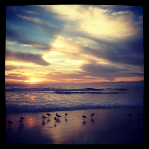 Just float #sunset #beachrun #heaven (at Marina Del Rey Beach)