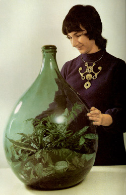 justsayjolie:  superseventies:  A 1970s terrarium.  What? How? What?