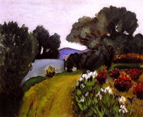 bofransson:  In the Nice Countryside, Garden of Irises Henri Matisse - 1919