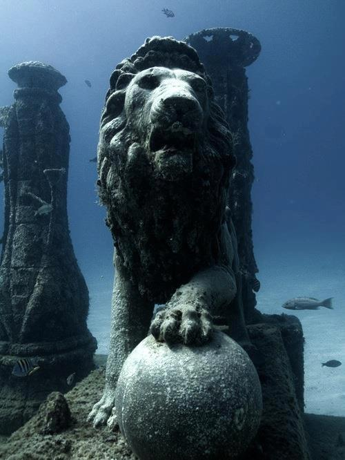 Cleopatra's Underwater Palace, Egypt   I still don't get why no one is LOSING THEIR FUCKING SHIT OVER THIS FIND iT SURVIVED THE EARTHQUAKE THAT LEVELED THE REST OF THE CITY IN 365 A.D.  CLEOPATRA'S FUCKING PALACE WITH INTACT FUCKING STATUARY NOT TO MENTION THE REST OF THE FUCKING ENTIRE GODDAMN ISLAND OF ANTIRRHODOS INCLUDING THE ANCIENT PORT OF ALEXANDRIA AND THEY'RE GONNA BUILD A MOTHERFUCKING UNDERWATER MUSEUM UNDERWATER. MUSEUM. can I be a mermaid tour guide there or some shit, you don't even have to pay me i will just live there forever oh my fucking god