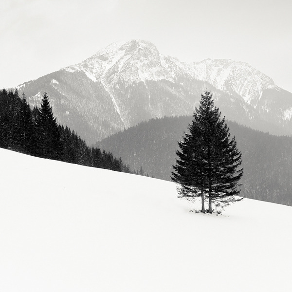 archenland:  Tatra Mountains by Mac Oller