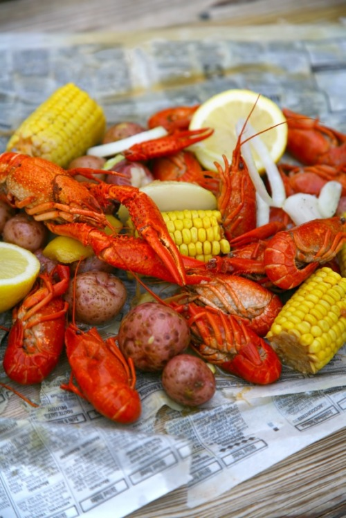 lyshaeskro:  Nothing like a crawfish boil!