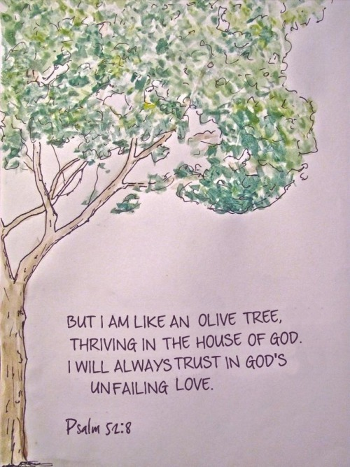 ibibleverses:  Psalm 52:8Follow us at http://gplus.to/iBibleverses