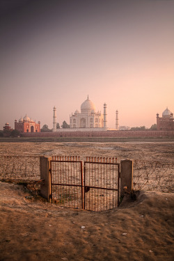 dormio:  Sunset Taj, Pierre Turtaut