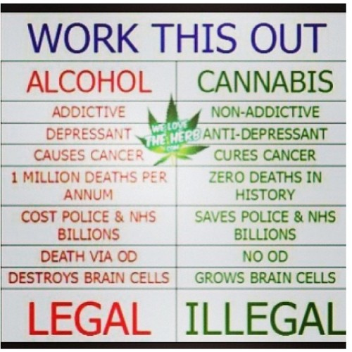 jaybdaboat:  #workthisout #weed #alcohol #beer #legal #illegal #legalize #harmless #dangerous