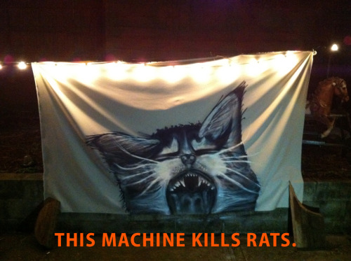#KLAW kitten liberation armed whissitance We're getting ready for May Day! New York: join the Immigrant Worker Justice throw-down on May 1, 12 noon at Bryant Park.https://www.facebook.com/events/443063909121561/