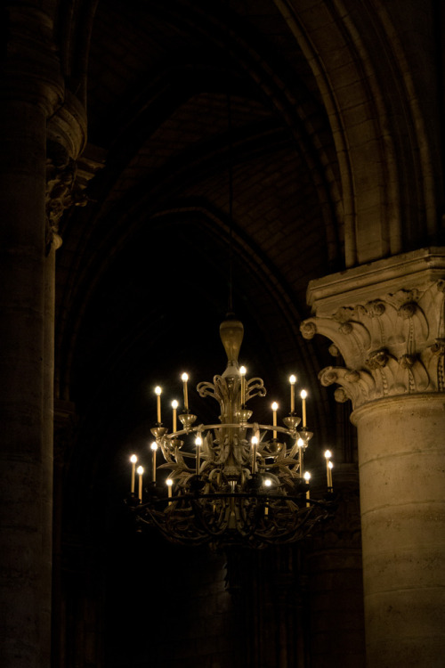 okkvlt:  Chandelier at Notre Dame, Paris