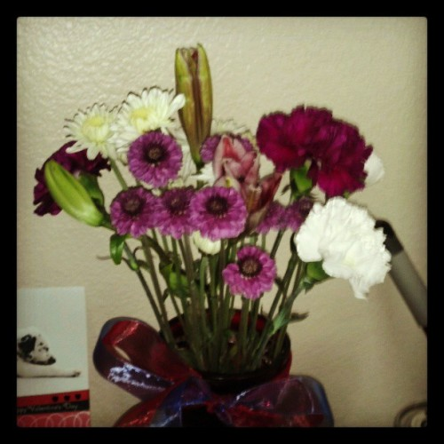 Flowers from Branden since he knew i wasn't feeling well. #bestboyfriendever #flowers #sopretty #hemakesmesmile