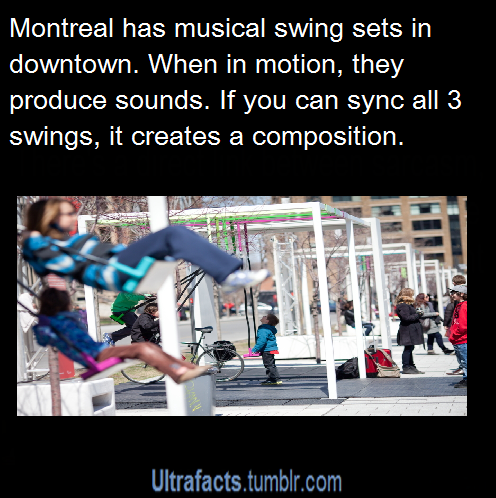 pizzaismylifepizzaisking: