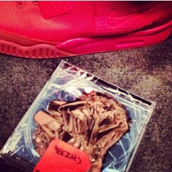 Its official, hail to the sneakergods 🙌 #Yeezy2 #igsneakercommunity