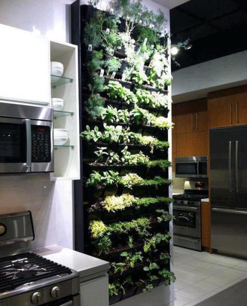 The ultimate spice rack:I would LOVE to have this in my kitchen as I use many fresh herbs in cooking.