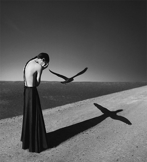 Striking images by Noell S. Oszvald.