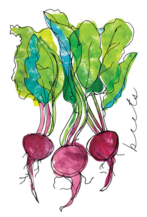 Sketch of the Day  B is for beets. Looks like the start of a series…hmm.