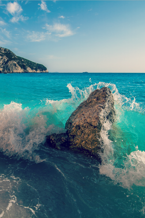 disminucion:  Rock vs Wave, Vladimir Matovic