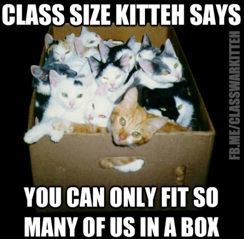 The first submission in our Class Size Kitteh campaign by @MSGunderson - make your own and hit the SUBMIT button