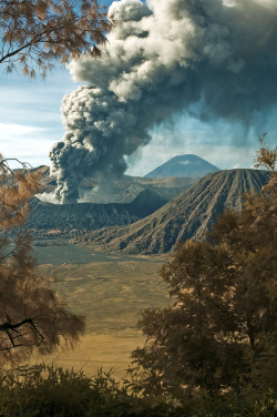 55mint:  Mount Bromo by: Yaman Ibrahim