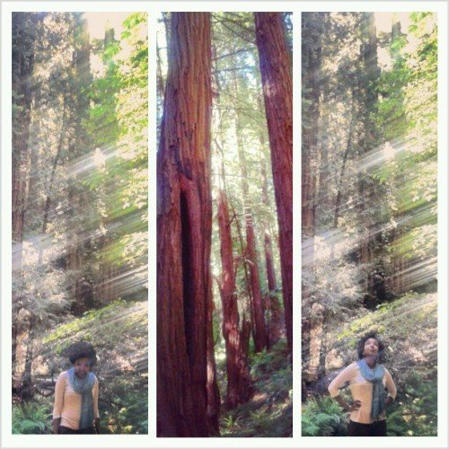 I just REALLY #love #trees, okay? #sorrynotsorry #notsurehowthesecameoutstreaky #allsmiles #MuirWoods #SanFrancisco