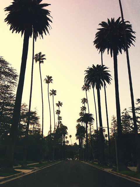 imposinggod:  Beverly Hills by Julius Lasin on Flickr.