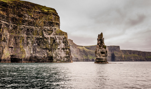 fieldsinireland: