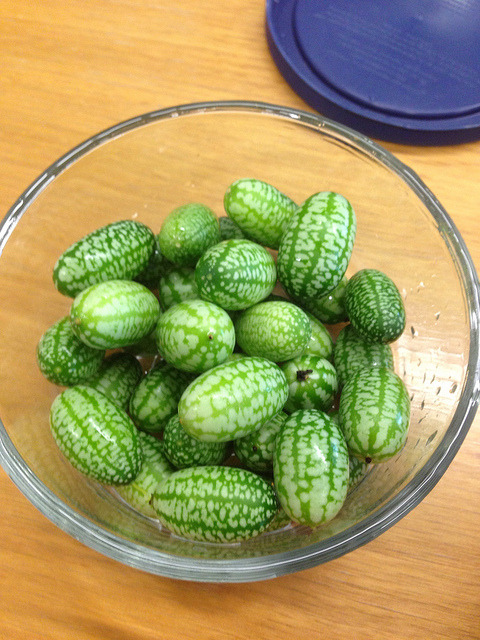 Tiny tiny watermelons!! (Actually miniature cucumbers). on Flickr.
