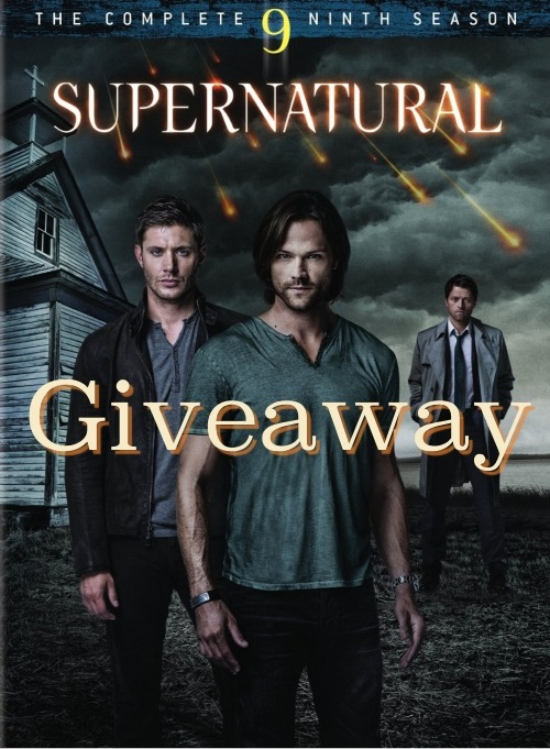 crossroadscastiel:  The ninth season of Supernatural is being released on DVD on September 9th, so I figured it was time for another giveaway. Since I am currently trying to save as much money as possible for jibcon next year however this giveaway isn't going to be nearly as big as the last one. :3 So basically… One person will win a copy of the season 9 DVD. I'm also gonna throw in a few things from my etsy shop. You must be followingme. DO NOT SPAM REBLOG THIS POST. Only 1 reblog per day. But you can reblog every single day if you want. Liking this post also counts as an entry. No giveaway blogs pls. I will ship anywhere in the world. Giveaway ends September 1st. That's about it. This one probably isn't nearly as fun as my past giveaways but Rome is calling my name and airfare isn't cheap. ;)