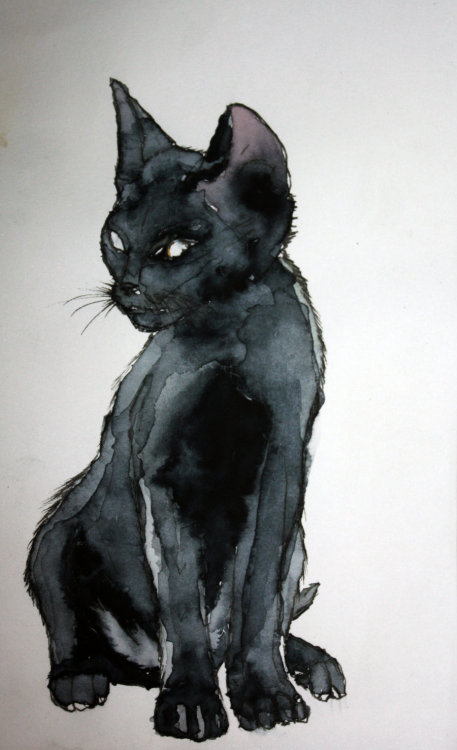 [Image: A watercolor of a black cat sitting and looking to the side.]  Source: http://vodoc.deviantart.com/art/Mon-ptit-chat-noir-205508708