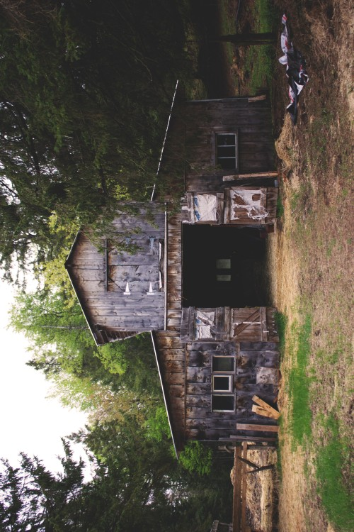 That nostalgic atmosphere filled with fresh air, live animals, old wood, dirt, and manure. I haven't been to a farm and held livestock and actually having to eat and have a good time with family ever since I was a little kid in the Philippines. Yeah, I was born and raised in the urban city as well as the farm. I take full pride in it. I just miss this feeling. It was such a pleasure to finally getting down and dirty with the animals and playing basketball on hard soil HAHA. Anyways, click on the picture to check out some more of my recent photography work!!! http://www.flickr.com/photos/calmvision/ http://www.flickr.com/photos/adrian-alconcel/