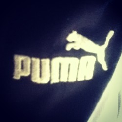 #puma #sweatpants #inlove #socomfy #neverwanttotakethemoff 💗