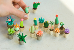 Love these little succulent sculptures by joojoo (she also makes jewelry for her Etsy shop).