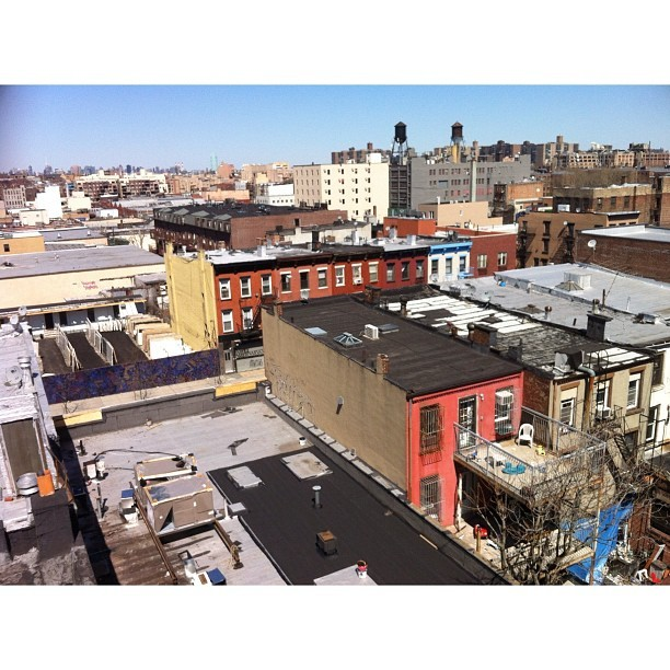 View from a Bed Stuy Rooftop #bedstuy #brooklyn #nyc #rooftop #streetphotography #iphoneography