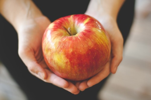 "youcanalwaysbestrong:  What I'm loving right now. Honeycrisp apples are the freaking bomb. Tart, sweet, crispy…they're everything I love in an apple. They're also very pretty, and a really good size for when you want a nice apple to fill you up. Not to mention, they are juicy.  So what is it about the Honeycrisp that inspires such a cult following? Well, it starts with the texture.  Honeycrisps are a very hard, crisp apple.  In fact, the New York State Apple Association website captures it perfectly when it describes this variety as ""explosively crisp"" and having a characteristic ability to ""shatter"" when bitten into, as if it ""snaps apart… and comes off the core in chunks.""  In that respect, think of biting into a Honeycrisp as producing the same effect as snapping off a piece of a perfectly tempered chocolate bar: that sound… that snap… it's perfection.  Of course, that's just the beginning.  Honeycrisps positively drip with juice, and they're sweet with just the right balance of tartness.    Does that not sound amazingly delicious?"