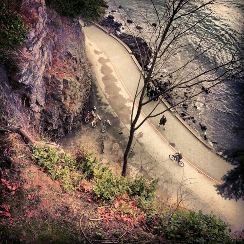 Seen around town: a bird's eye view of the Stanley Park seawall this past weekend. The seawall is grade separated with lanes for folks on bikes and foot.