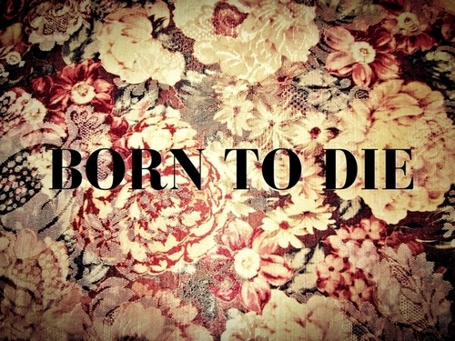 ezgi-gns:  We were born to die…