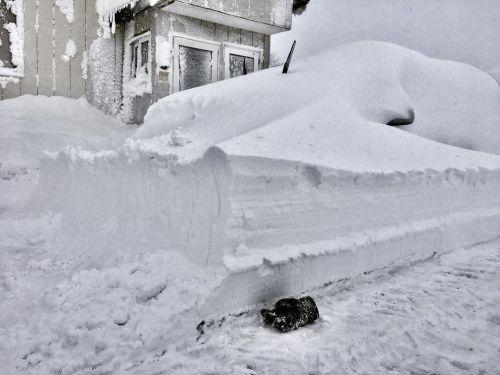 Another 30 cm snow, another buried car! #rusutsuholidaychalet #rusutsuholiday #bigsnow #rusutsu #niseko #japan  https://www.instagram.com/p/CLAhjvFsbYJ/?igshid=1usbylz4rhbqy #rusutsuholidaychalet#rusutsuholiday#bigsnow#rusutsu#niseko#japan