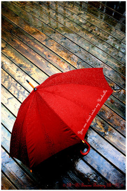 followthewestwind:  (— You can stand under my Umbrella —) by ¤ [B~B] Bourne Bedweey [B~B] ¤ {Away} on Flickr.